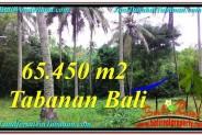 65,450 m2 LAND SALE IN TABANAN TJTB290