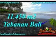 FOR SALE Affordable 11,450 m2 LAND IN TABANAN TJTB291