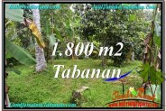 Magnificent 1,800 m2 LAND IN TABANAN BALI FOR SALE TJTB293